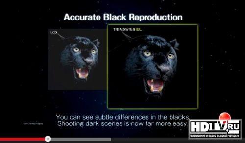 Sony сравнивает свои OLED мониторы с ЖК LED моделями